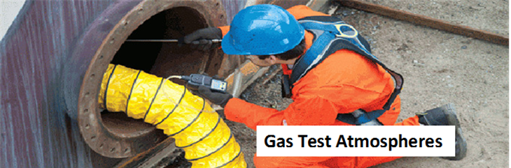 Gas test atmospheres training